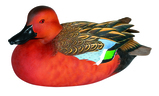 Cinnamon Teal Decoy