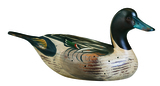 Wooden Pintail Decoy