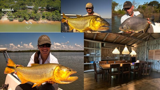 Argentinean Freshwater Golden Dorado Fishing for 2