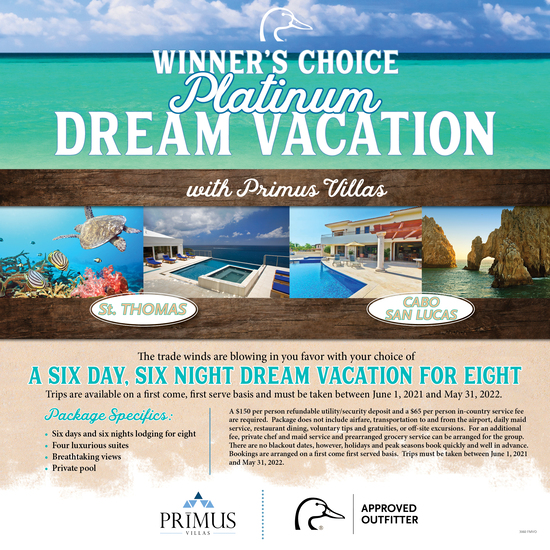 Dream Vacation for 8- Platinum Package
