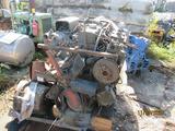 White Diesel Engine