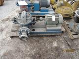 Magnatek Electric Motor & Water Pump