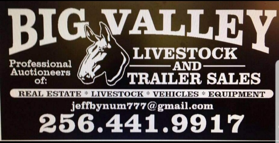 Big Valley Livestock Farm LLC