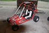 YERF-DOG GO CART, ROLL CAGE, 195 TECUMSEH