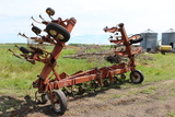 """IH 133 12R30"""" Cultivator, C Shank"""
