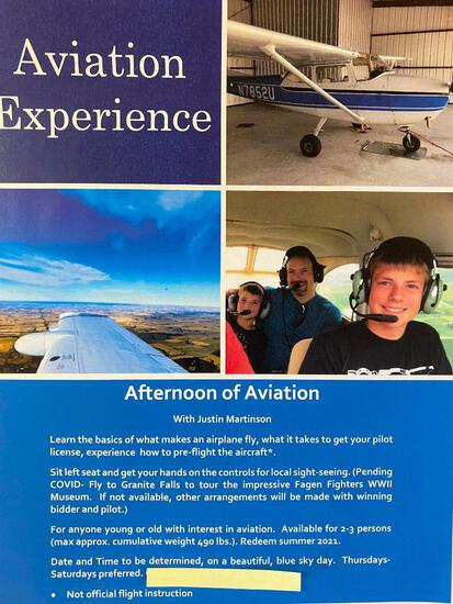 Aviation Experience- learn about aviation and get hands on experience including sitting co-pilot.