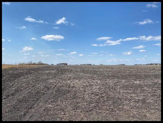 Parcel 1: 84.02 Acres (81.5 +/- Tillable) Located south of drainage ditch