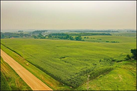MARVIN THIELKE ESTATE KANDIYOHI CO. FARM LAND