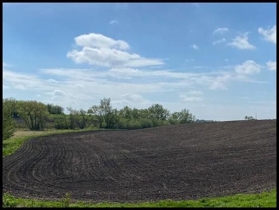 39.6 Acres of Farm Land Located in Green Lake Twp, Section 33, T-120-N, R-34-W, Kandiyohi Co.