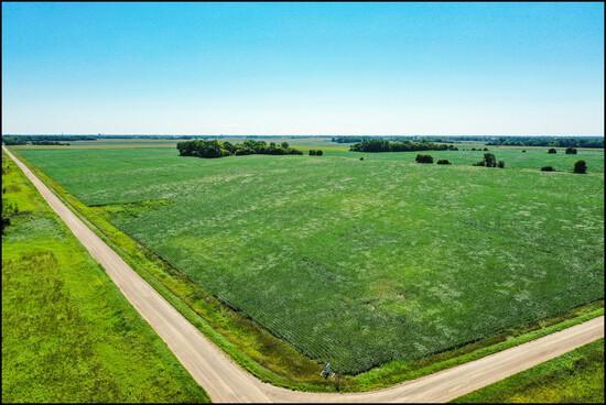 MULTI-PARCEL CHIPPEWA & KANDIYOHI CO. FARM LAND