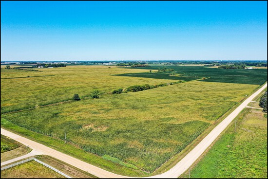MATSON FAMILY FARM LAND AUCTION