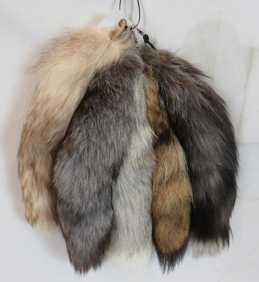 5 ASSORTED FOX TAILS