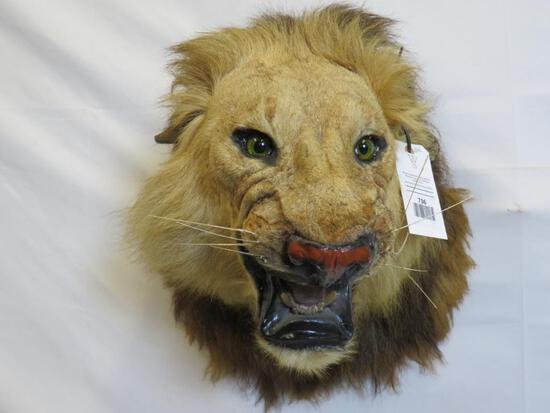 LION HEAD MT (TX RESIDENTS ONLY)