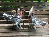 Two Museum Quality Rock & Willow Ptarmigan Bird Mounts - NEW Taxidermy 16