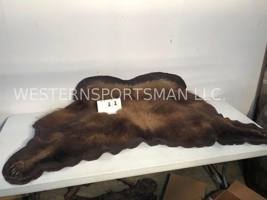 BLK BEAR HIDE -ONLY 5 CLAWS TAXIDERMY