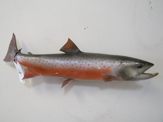Salmon Fish Mt TAXIDERMY