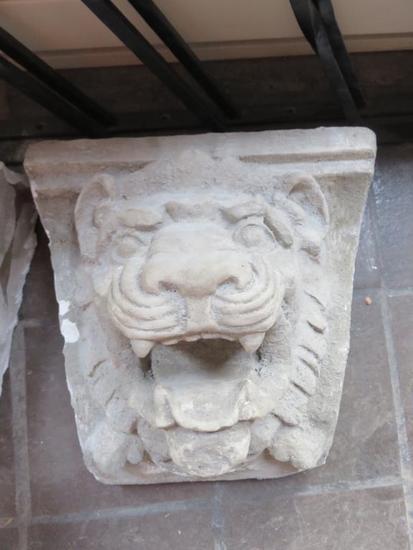 F- Lion Head Bust