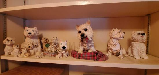 H2- Shelf of Westies Figurines