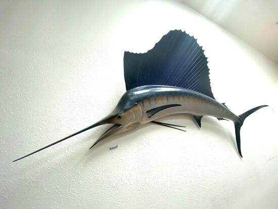 UP- Mounted Sailfish