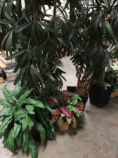 Artificial plastic plants (Used ) NOTE: This unit is being sold AS IS/WHERE IS via Timed Auction and