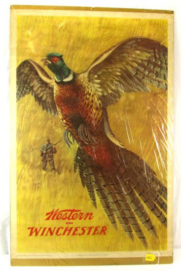Large Advertising Print; Western Winchester; Pheasant; 42in X 28in; Litho; 1955; Olin Mathieson