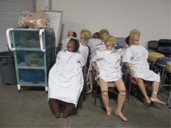 Assorted Training Mannequins