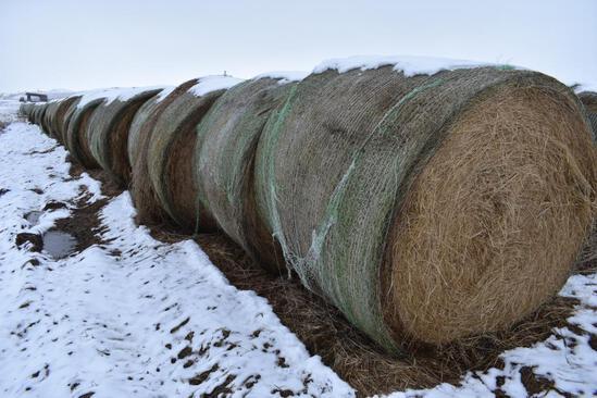 (20) 2019 first cutting grass round bales