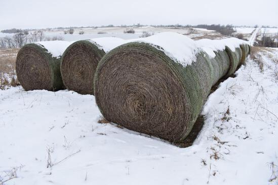 (18) 2019 first cutting grass round bales