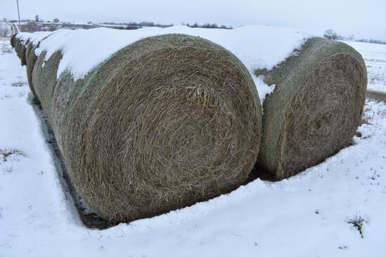 (14) 2019 second cutting grass round bales