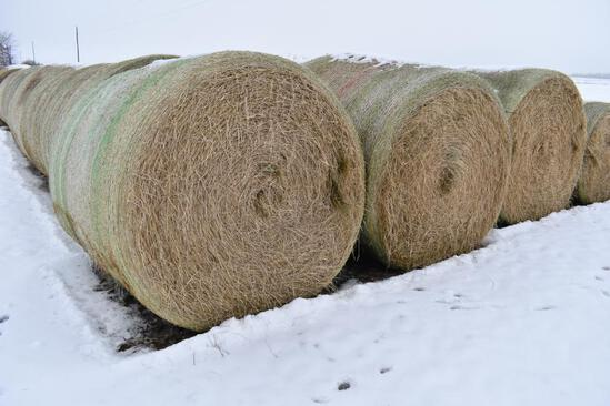 (13) Second cutting grass round bales