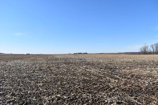 Tract 2 - 41.10 Taxable Acres+/-