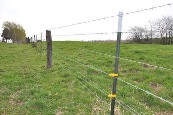 Tract 1 - 37.85 Surveyed Acres
