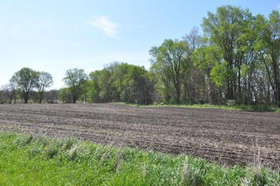 Tract 2 - 68 Acres (Subject to Survey)