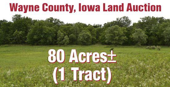 Wayne County, IA Land Auction