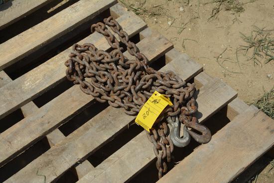 20' log chain