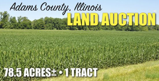 Adams County, IL Land Auction