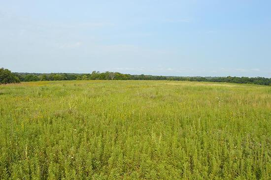 Tract 1 - 63 Acres+/- (subject to survey)