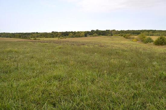 Tract 1 - 98.30 Taxable Acres+/-
