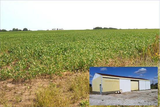 Tract 1 - 140 Surveyed Acres