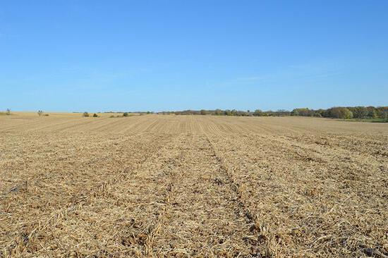 Tract 1 - 65.60 Surveyed Acres