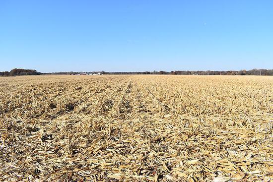 Tract 1 - 80.91 Surveyed Acres