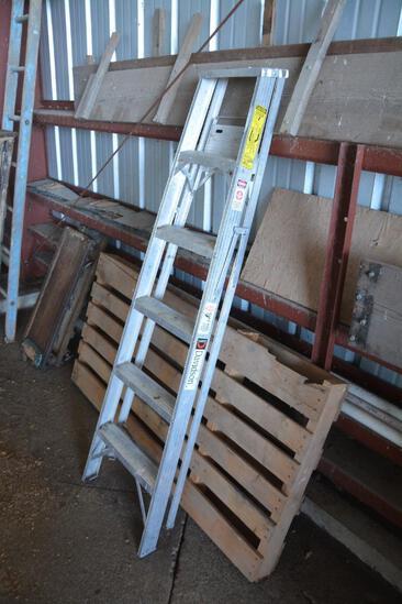 Davidson 6' alum. Ladder