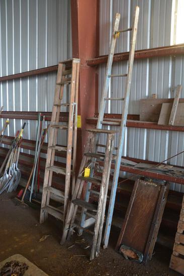 (3) Wooden ladders