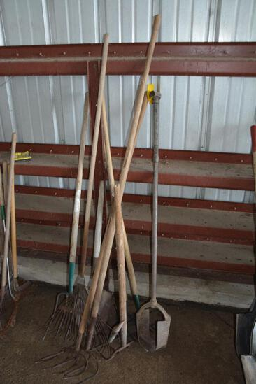 Selection of long handled tools