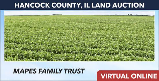Hancock County, IL Land Auction - Mapes