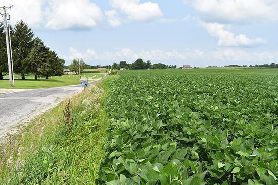 Tract 1 - 71.95 Surveyed Acres+/-