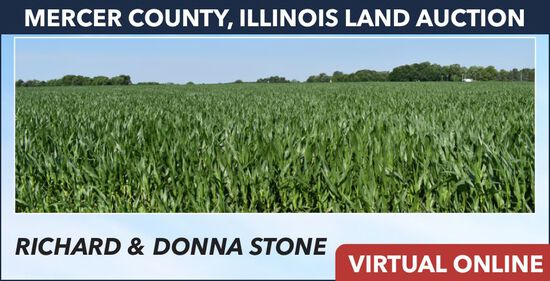 Mercer County, IL Land Auction - Stone