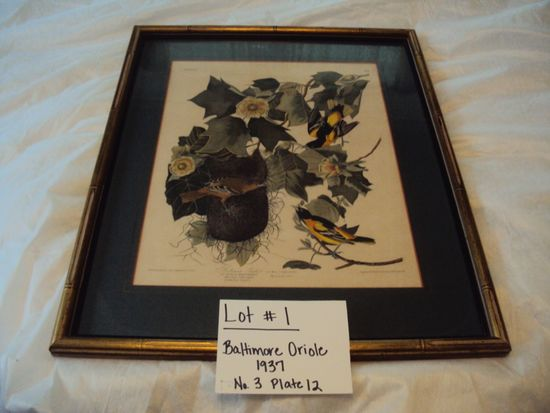 BALTIMORE ORIOLE, 1937, NO.3 PLATE 12 WITH GOLD FRAME & GLASS