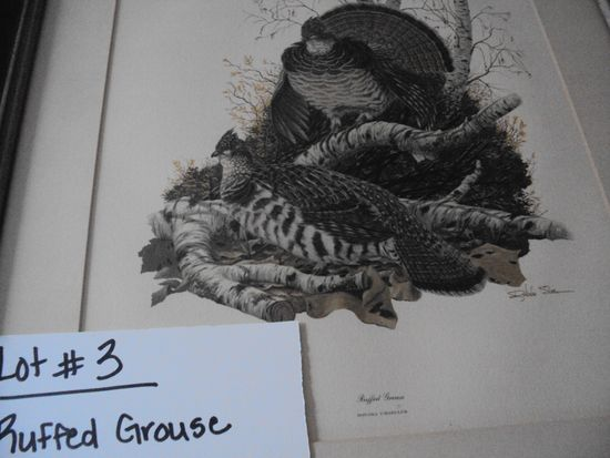 RUFFED GROUSE, PLATE XII, BY RICHARD SLOAN WITH FRAME & PAPERWORK