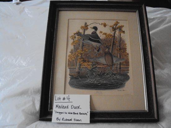 """MALLARD DUCK, """"GRIGGSVILLE WILD BIRD SOCIETY"""" BY RICHARD SLOAN WITH FRAME & PAPERWORK"""
